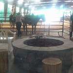 fire pit and roping show
