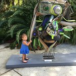 Key West Tropical Forest and Botanical Garden Foto