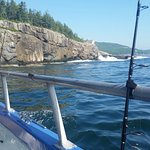 Foto di Acadia Fishing Tours
