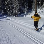 Injoy our groomed snow shoe and cross county ski trails.