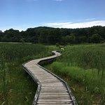 Appalachian Trail - Pochuck Boardwalk