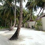 Road through the Island