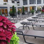 Courtyard Chicago Downtown/River North Foto