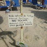 Foto di Grand Bahia Principe Tulum