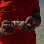 crab caught by our guide Ahmed