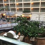 Photo of Sheraton Miami Airport Hotel