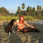 Did I mention there are lovey dogs???? They will escort you on the beach!