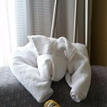 Towel folded like a puppy greets you upon arrival