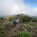 Mt. Kenya Guides and Porters Club