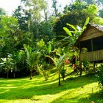 Overnight in Tamandua Biological Reserve