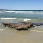 Coquina Rock beach on the ocean side of Washington Oaks State Park