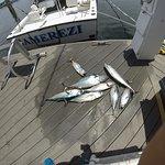 Fishing Boats Ramerezi & Shadow Photo