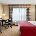 WBENOne King Guest Room