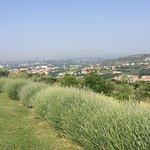 Foto di Agriturismo Il Pianetto