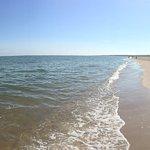Beach - Delta Hotels by Marriott Virginia Beach Bayfront Suites Photo