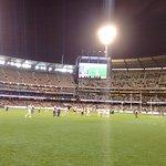 Collingwood v Geelong 2015 2