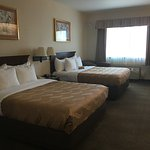 Foto de Quality Inn & Suites At NASA Ames