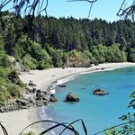 Picture of the cove via the trail