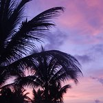 Foto de Barcelo Maya Tropical