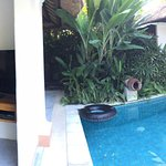 Bali Pavilions Foto