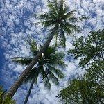 Photo de Marina Phuket Resort