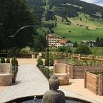 Unser Yoga-Kräutergarten