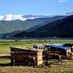 Photo de Napa Lake Grasslands