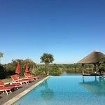 Photo de L'Estelle en Camargue