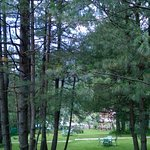 Photo de Hotel Senator Pine-n-Peak Pahalgam