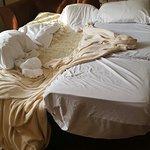 Photo de Country Inn & Suites By Carlson, Williamsburg East (Busch Gardens)