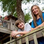 Play house in 100-year-old trees at Tree House Village.