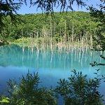 Foto de Blue pond