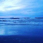 IMG_20160715_235514_large.jpg