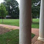 Columns along the Lawn