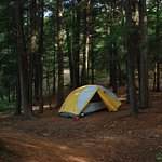 523; Talus2 North Face tent