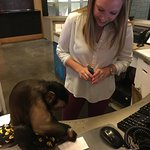 Sasha helped the Desk Clerk get us checked-in