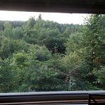 Vue panoramique depuis le lit sur une belle forêt et d'un étang.
