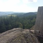 Photo de Grizedale Forest