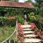 Garden behind Ancien Hotel Baudy.