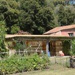 Maisonette cote jardin