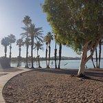 Photo de Hampton Inn Lake Havasu City