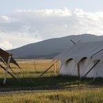 Photo de Yellowstone Under Canvas