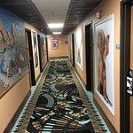 Hallway for pet designated rooms.