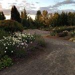 Photo de Oregon Garden Resort