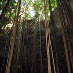 Ten Bay caves