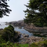 On the Pacific Wilde Trail