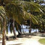 Photo de Sea Scene Resort