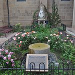 Garden on south side of cathedral
