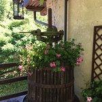 Wine press/planter in the Castello courtyard