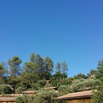 20160719_174350_large.jpg
